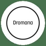 Dromana